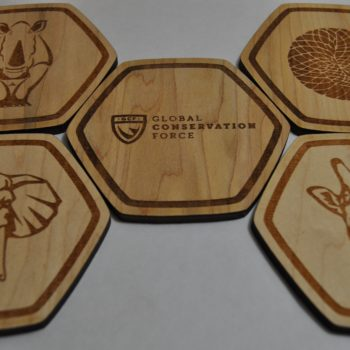 Endangered Animal Wood Coaster Set